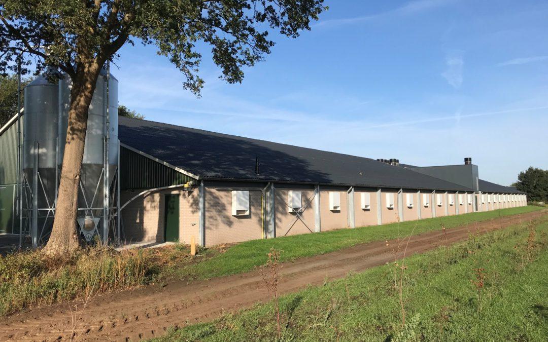 Nieuwe stal in gebruik