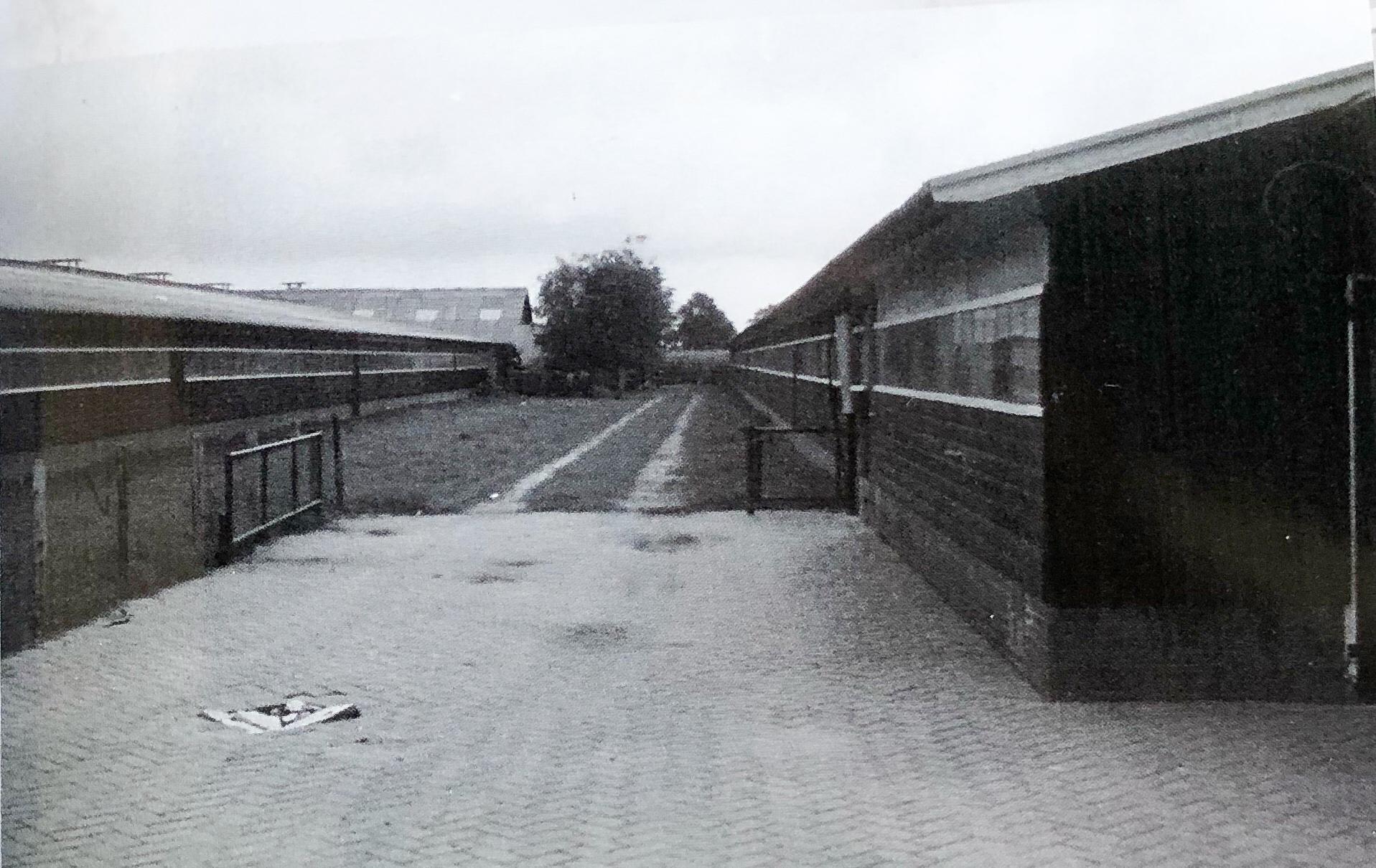 Vermeerderingsbedrijf Twickelerweg